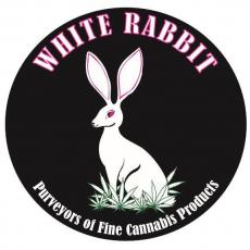 white-rabbit-large