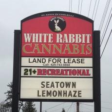 white-rabbit-sign